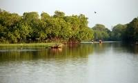 Arugam-Bay-Lagoon.jpg